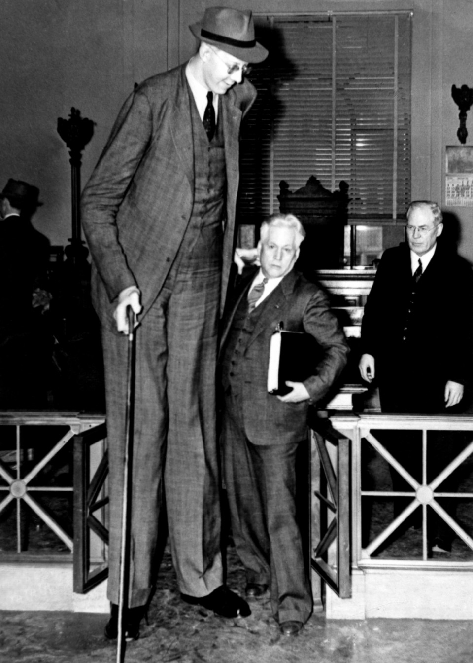 robert wadlow canne