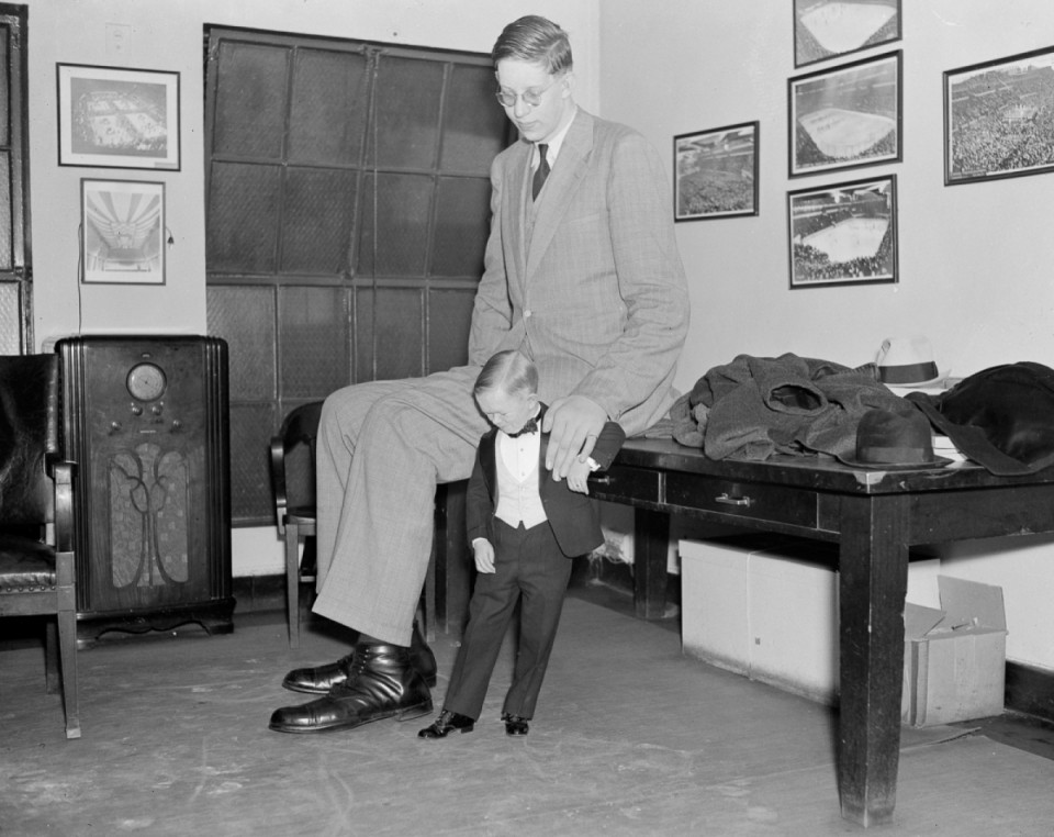 robert wadlow major mite pointure